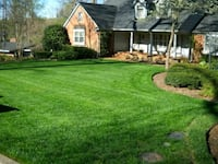 Lawn service,  yard cleaning Houston