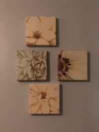 two white and brown flower paintings Marietta, 30060