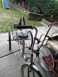 silver and black adult trike