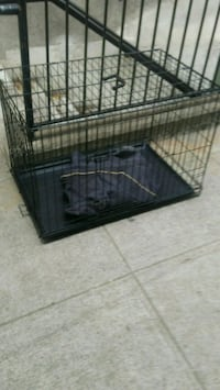 black metal folding dog crate 2322 mi