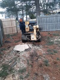 Stump Grinding price varies Palmyra
