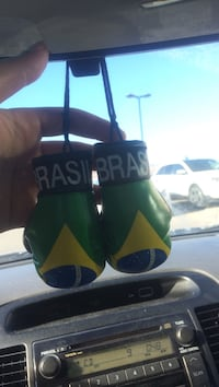 pair of Brasil car accessory Richmond Hill, L4S 0B2