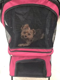 1a230fa01b Black and pink pet carrier Jacksonville, 32223