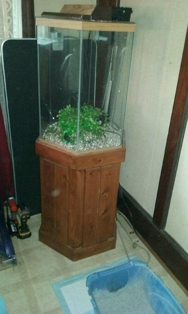 Clearoctagon Fish Tank And Equipment