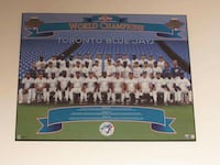 Toronto Blue Jays Back 2 Back World Series
