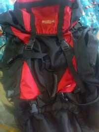 Magellan backpack Knoxville, 37909