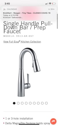 Delta Essa Faucet - Artic Stainless Steel