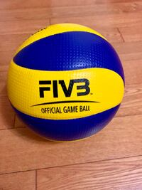 Mikasa MVA200 Official Game Indoor Volleyball Richmond Hill, L4B