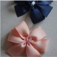 Two blue and pink ribbon bows Toronto, M2N