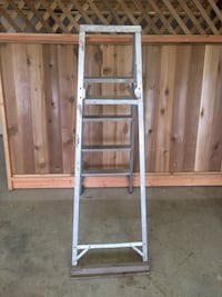 Ladder Painter's Tray