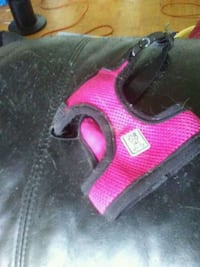 Pink used harness for dog Toronto, M2J 1B8