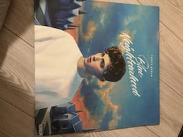 BLUE NEIGHBORHOOD TROYE SIVAN VINYL RECORD