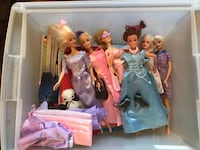 Barbies, accessories and books