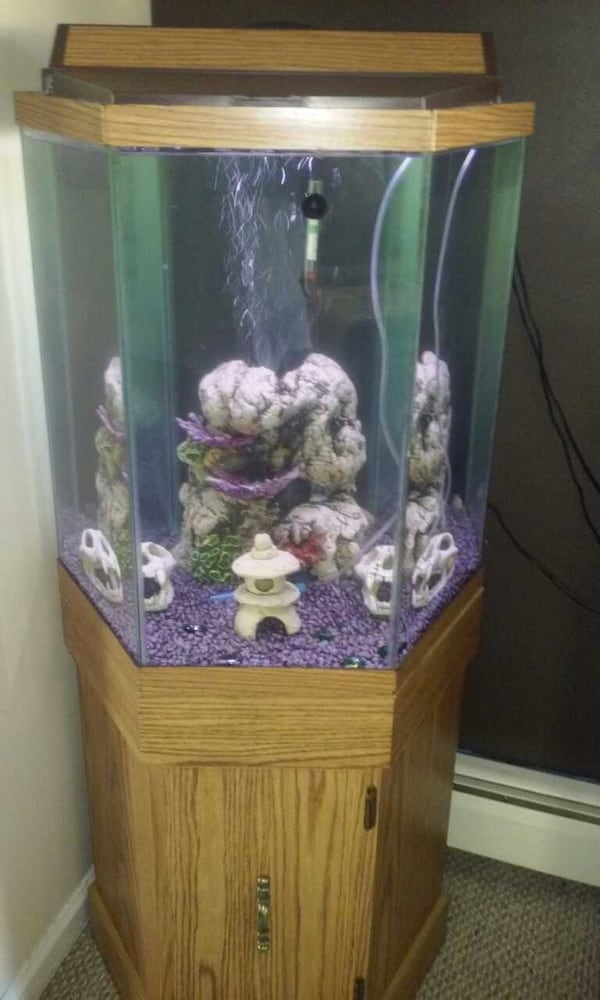 Used Octagon Fish Tank For In
