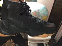 brand new lebron james black lion edition size 12 Toronto, M9V 1N7