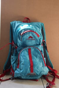 blue and red The North Face backpack