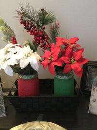 Christmas red or green 1L mason jars with red or white poinsettias. Custom made and can take up to 2 days to paint. If you want both and the basket it will be $25  Toronto, M1B 2K6