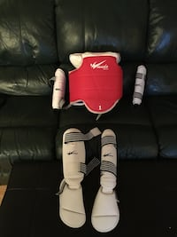 red Taekwondo vest and shin guards