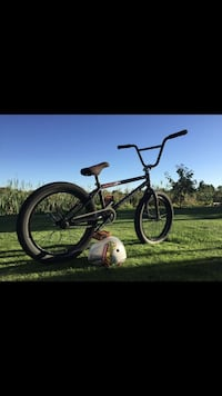 Fully custom bmx bike  Ladner, V4K 3A2