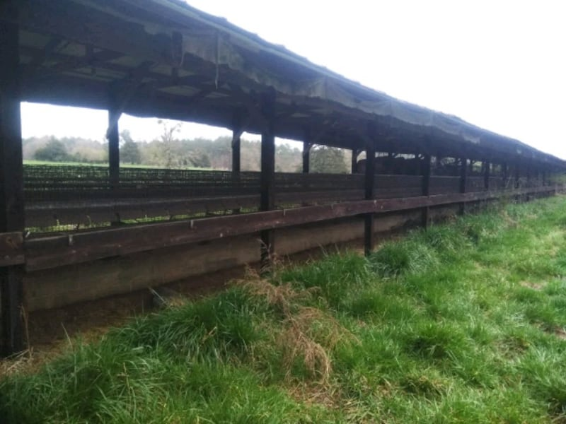 7.5ft chicken cages 1d6f44db-82cb-4caf-9743-b46ac3a5fea2