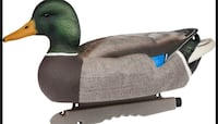 Duck decoys Tomball, 77375
