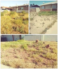 Yard clean up weeds and grass removal Las Vegas, 89103
