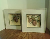 Shadow Box Pinecones....Vguc  Oshawa, L1J 4Z3