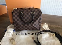 Louis Vuitton speedy 25 Fremont