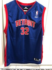 Richard Hamilton Detroit Pistons Basketball Jersey Twin Lake, 49457