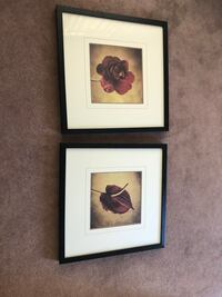 Two black wooden framed painting of flowers Vancouver, V6E 3Y4