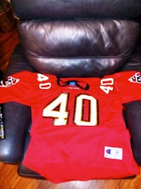 Authentic champion Jersey.. mike alstott.. Lakeland, 33810
