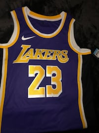 Lebron James Purple Edition Los Angeles, 90011