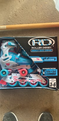 2 in 1 roller skates and blades