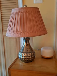 Silver and Pink Lamp Gaithersburg, 20886