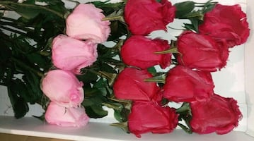 24 Real Feather Roses Flowers Bouquet Bridal Ikeba