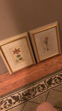 two brown wooden framed paintings of flowers Damascus, 20872
