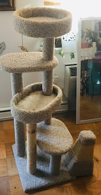 Two Cat scratching post  Falls Church, 22041