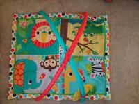 Bright Starts Baby play mat and gym Greenbelt