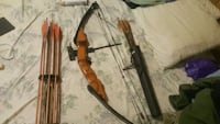 golden eagle compound bow  Reading