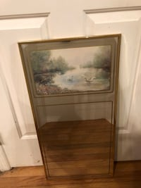 "Gold Colored Framed Swan Mirror 15""x30"" 48 km"