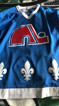 Quebec Nordiques throwback jersey mint condition  Calgary, T3H 0L2