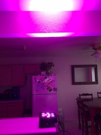 LED Uplights 1-$120 more than 4-$100 Watsonville, 95076