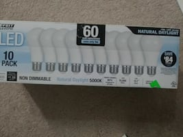 LED 10 pack Natural Daylight box