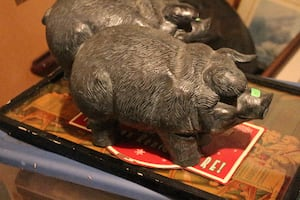 Large plastic/ceramic pigs