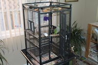 Huge Bird Cage with Rolling Stand