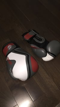 Century 14 oz Boxing Gloves Mississauga, L5N 6B7