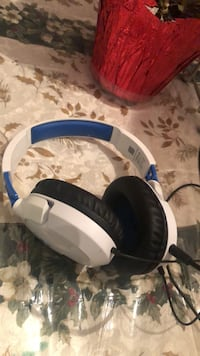 White and blue corded headphones