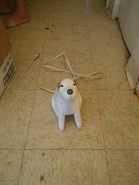 white dog electronic device Bluefield, 24701