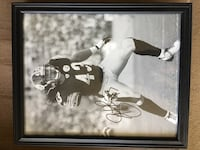 Steelers-Troy Polamalu-signed photo Williamsburg, 23188