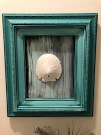Real sand dollar art  Clearwater, 33764